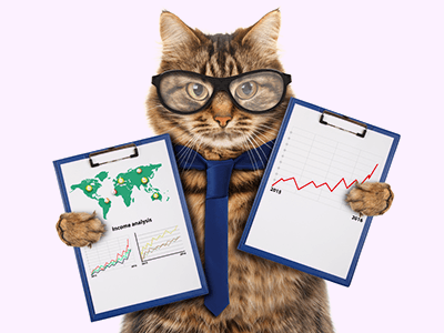 Расхождения бухгалтерского и налогового учета